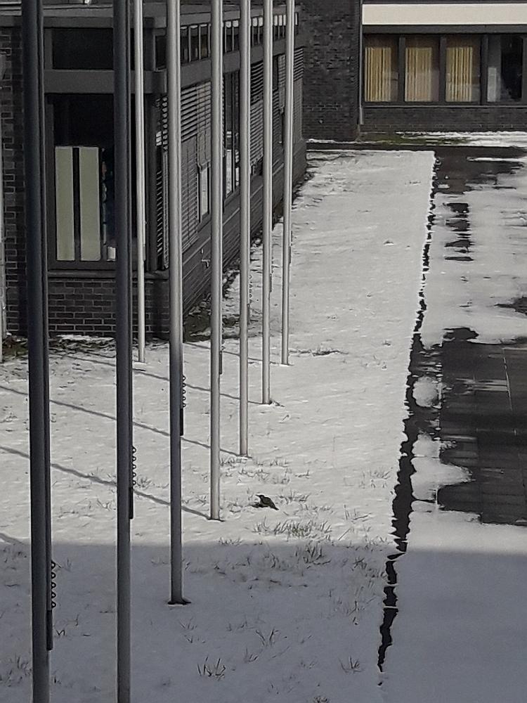Innenhof.jpg
