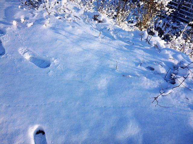 Rtsel01_2014-12-31.jpg