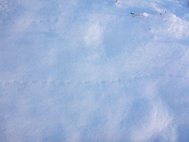 Rtsel02_2014-12-31.jpg